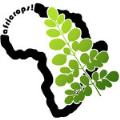 LOGO_africrops! GmbH