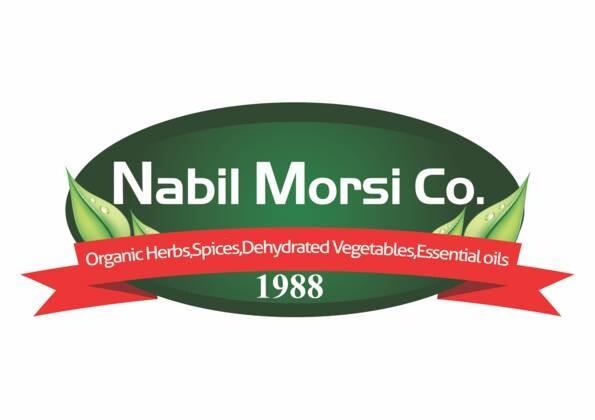 LOGO_NABIL MORSI CO