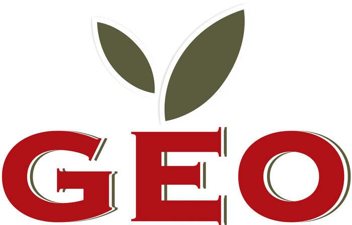 LOGO_Geo