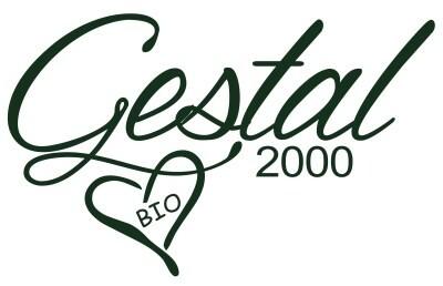 LOGO_GESTAL 2000 S.R.L.