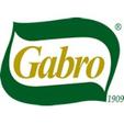 LOGO_GABRO SRL