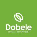 LOGO_Dobeles Dzirnavnieks AS