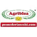 LOGO_Agriblea