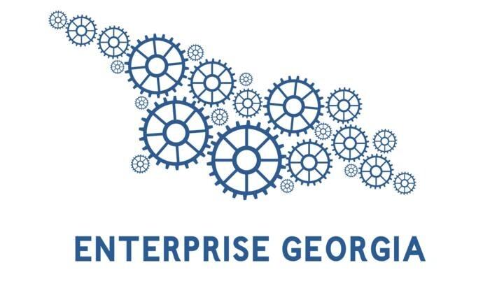 LOGO_LEPL Enterprise Georgia