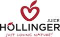 LOGO_IMS Höllinger GmbH