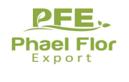 LOGO_PHAEL FLOR EXPORT