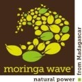 LOGO_Moringa Wave