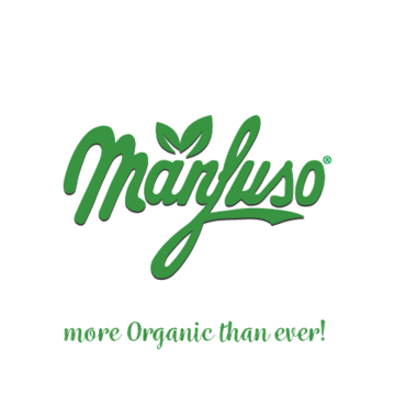 LOGO_Conserve Manfuso Srl