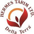 LOGO_HERMES TARIM LTD.