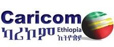 LOGO_Caricom Ethiopia Import Export PLC