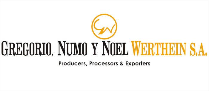LOGO_Gregorio Numo y Noel Werthein S.A.