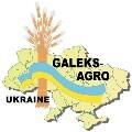 LOGO_Galeks-Agro, PE