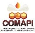 LOGO_Cooperativa Mista dos Apicultores da Microrregião de Simplício Mendes - COMAPI