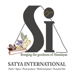 LOGO_SATYA INTERNATIONAL