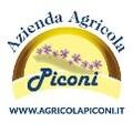 LOGO_AZIENDA AGRICOLA PICONI