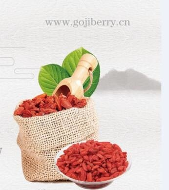LOGO_Ningxia Sino-Western Origin Imp. / Exp. Trading Co., Ltd