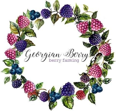 LOGO_The Georgian Berry
