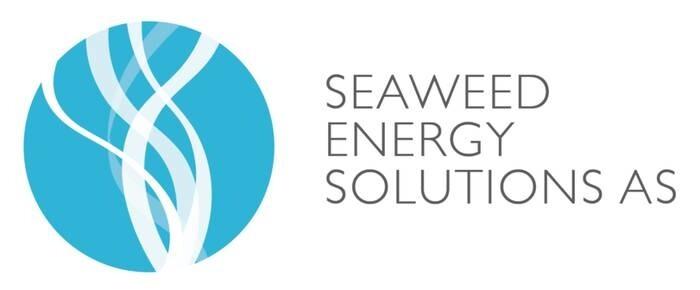 LOGO_Seaweed Energy Solutions AS