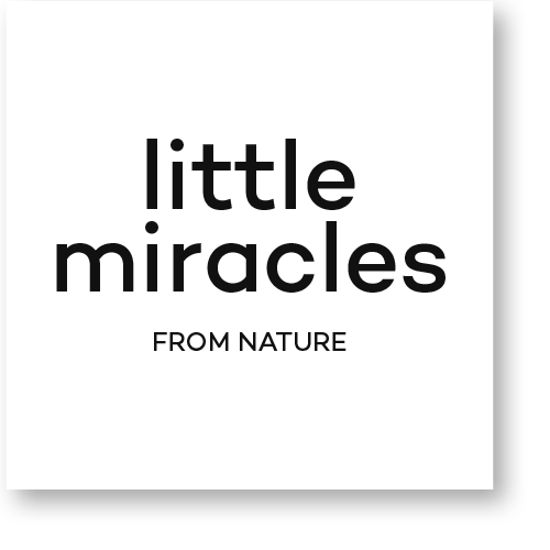 LOGO_Little Miracles