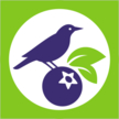 LOGO_AMC Yahidky (BigBlue organic blueberry farm)