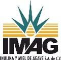 LOGO_Inulina y Miel de Agave
