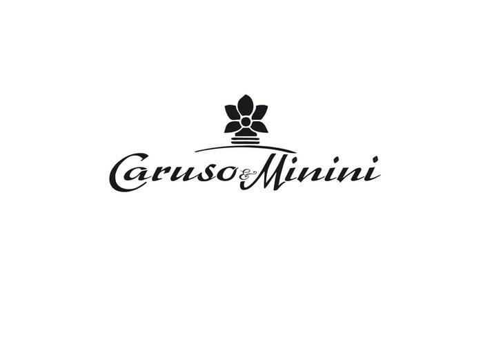 LOGO_CARUSO & MININI SRL