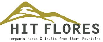 LOGO_Hit-Flores LLC