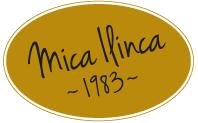 LOGO_Mica Ilinca