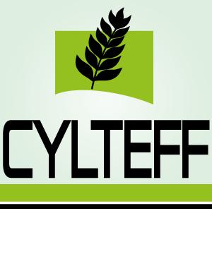 LOGO_CYLTEFF SL
