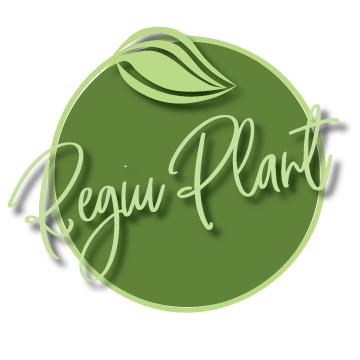 LOGO_SC REGIU PLANT SRL