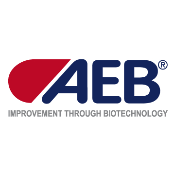 LOGO_AEB Group