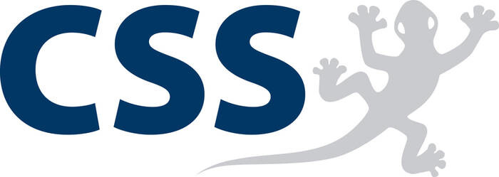 LOGO_CSS AG