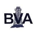 LOGO_BVA Inc