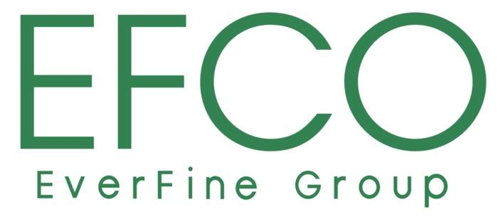 LOGO_EFCO Electronics GmbH