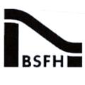 LOGO_Bundesverband der Spielplatzgeräte- und Freizeitanlagen-Hersteller e.V. (BSFH)