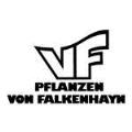 LOGO_VF-Pflanzen von Falkenhayn GmbH & Co. KG