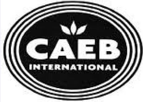 LOGO_CAEB INTERNATIONAL SRL