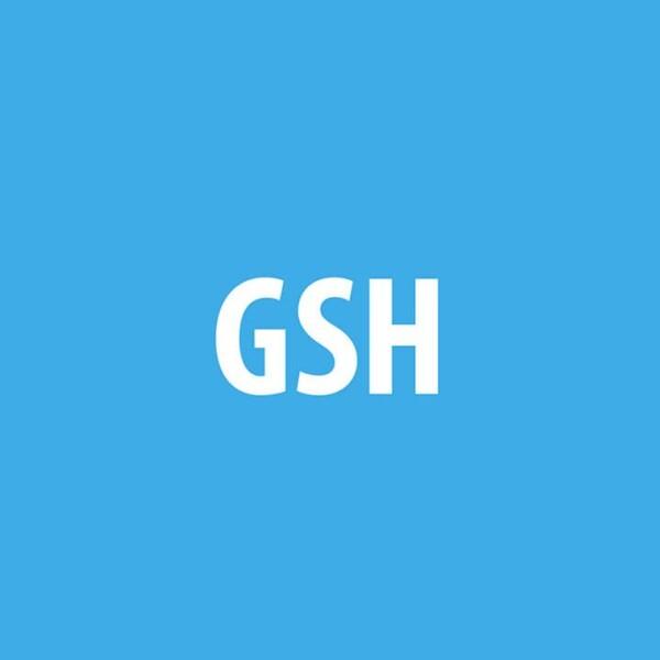 LOGO_GSH GmbH