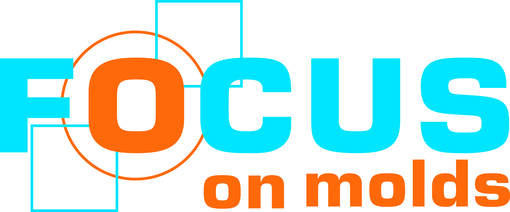 LOGO_FOCUS ON MOLDS SRL