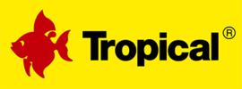 LOGO_TROPICAL - Tadeusz Ogrodnik