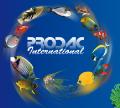 LOGO_PRO.D.AC International S.r.l.