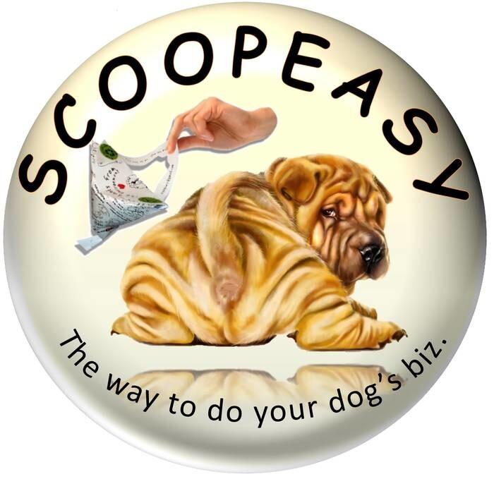 LOGO_Scoopeasy