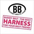 LOGO_Class Art Productions Inc. Buddy Belts