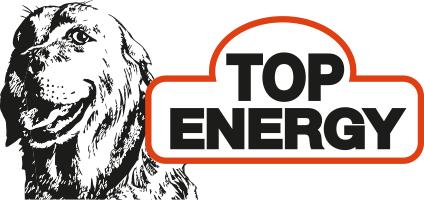 LOGO_Energy.com srl