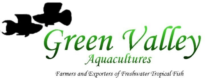 LOGO_Green Valley Aquacultures (Pvt) Ltd