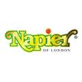 LOGO_Napier Ltd
