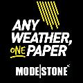 LOGO_Modestone Ltd