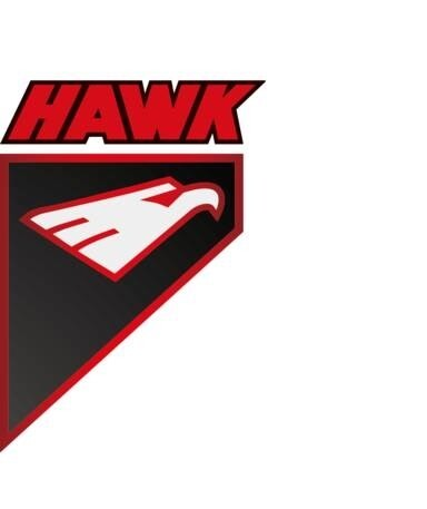 LOGO_Qiqihar Hawk Industries Co., Ltd.