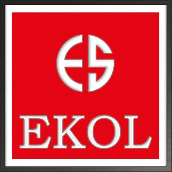 LOGO_EKOL & VOLTRAN