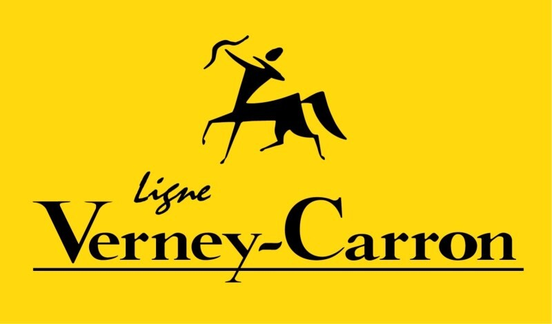LOGO_Ligne Verney Carron - Club Interchasse - Stepland